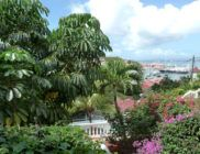 location-saint-barth-CCA2-Gustavia-14