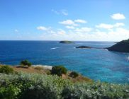 location-saint-barth-caramba-villa-Pointe-Milou-13