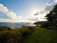 location-saint-barth-domingue-Pointe-Milou-5