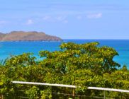 location-saint-barth-phebus-St-Jean-23