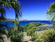 location-saint-barth-tichka-Flamands-1