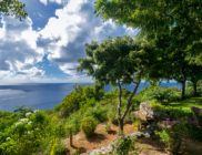 location-saint-barth-villa-margot-Lurin-5